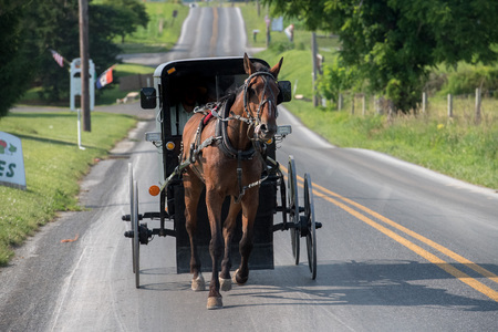 amish buggy: horse wagon buggy in lancaster pennsylvania amish country Stock Photo