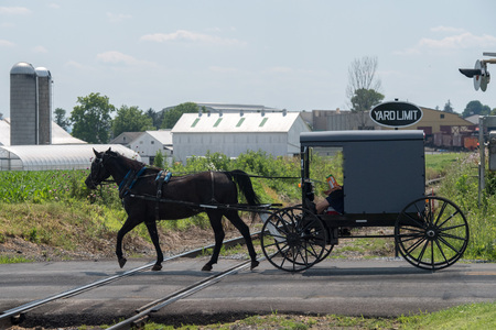 horse wagon buggy in lancaster pennsylvania amish country Stock Photo