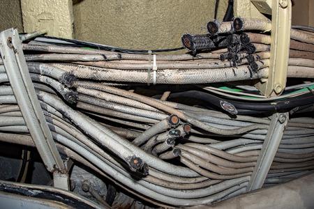 ratón masticado cables eated rotos de cerca los detalles