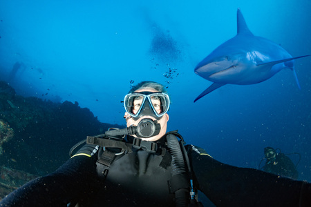 Great grey white shark ready to attack a scuba diver taking a selfie