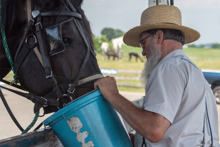 LANCASTER, USA - JUNE 25 2016 - Amish people in Pennsylvania. Amish are known for simple living with touch of nature contacy, plain dress, and reluctance to adopt conveniences of modern technology
