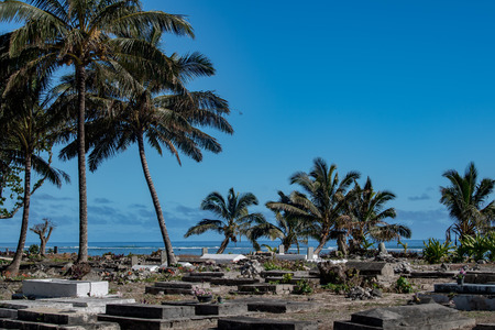 Cemetery on tropical coconut pacific ocean beach background