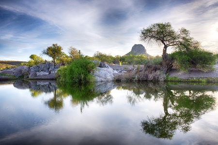 Baja California Sur desert oasis and montains landscape view panorama