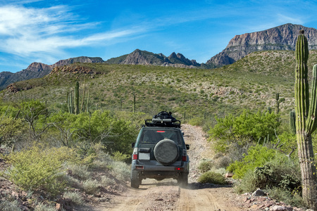 offroad driving in Mexico baja california landscape beautiful colors panorama desert road