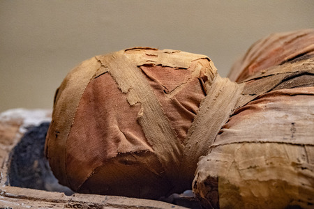 Egyptian mummy close up detail