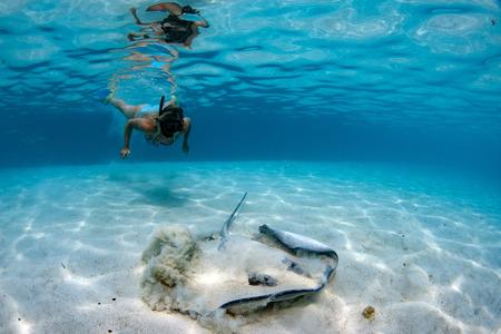 Taucher und Stachelrochen in Moorea Französisch-Polynesien