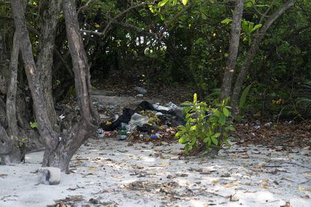 plastic and rubbish on desert tropical island paradise sandy beach