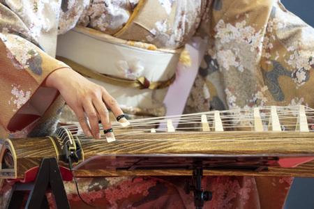 Koto japanese harp costume player 免版税图像