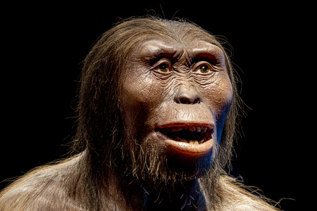lucy neandertaler cro-magnon weibliches gesicht isoliert auf schwarz Standard-Bild