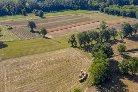 mature wheat farmed fields aerial drone panorama landscape