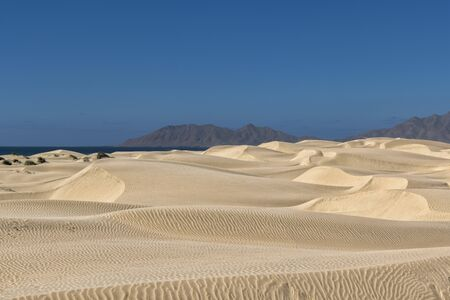 desert sand dunes at sunset view in Baja California Sur Mexico