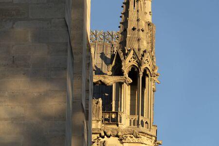Notre dame Paris before burning detail Imagens