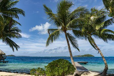 bora bora polynesia paradise beach turquoise water 免版税图像