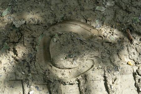 horseshoe foot on mud detail Stockfoto