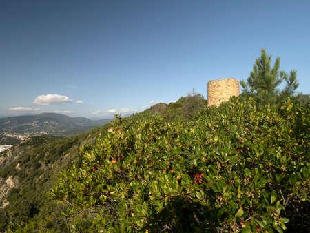 Baffe Point saracen tower in Liguria Italy Standard-Bild
