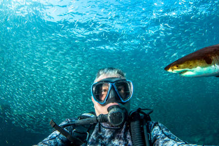 Great white shark ready to attack a scuba diver taking a selfie Standard-Bild
