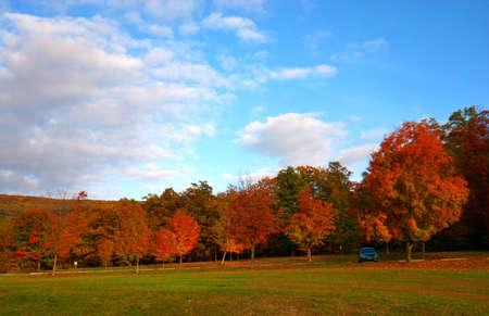 Fall landscape