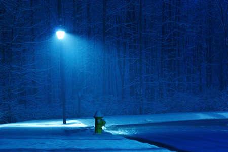 Winter night Standard-Bild