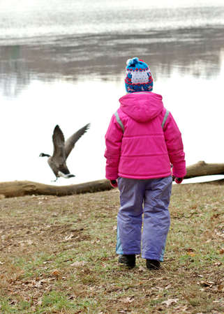 Little girl and goose Stock Photo - 300282