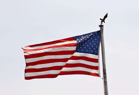 rectangulo: Bandera americana