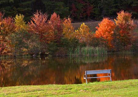 Autumn idyll   Greenbrier State Park. Maryland photo