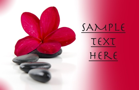 Spa details and concepts with gradient background  photo