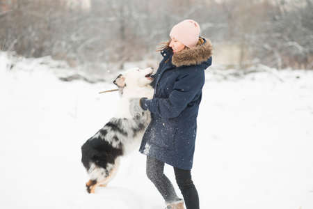 Australian shepherd playing with woman in winter forest.