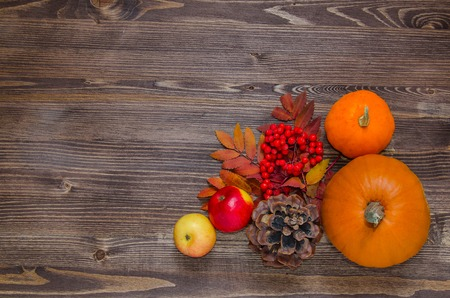 ash gourd: Pumpkins, apples, berries, cone and leaves on wooden background