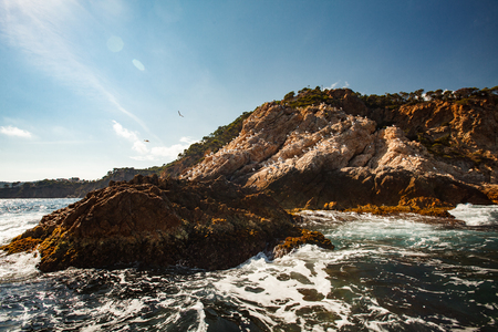 the firmament: View of the coastal cliff with gulls from the open sea, costa brava Stock Photo