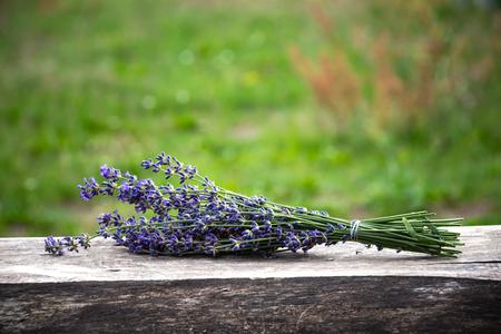 a bouquet of lavender. summer. village