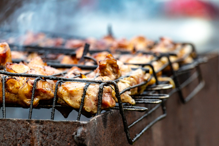 Camping. Bonfire. B-B-Q. Fragrant chicken wings at the stake