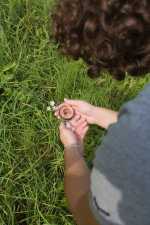 orienting: hand with compass on background of the herb