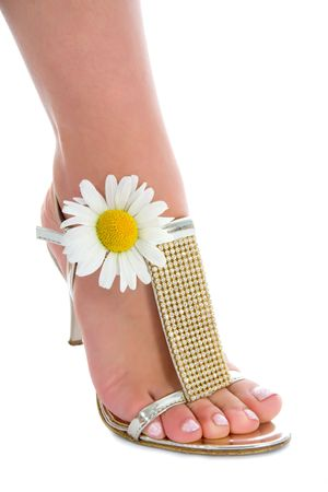 Long legs on high heels with flowers on white stock photo picture long legs on high heels with flowers on white stock photo 5082603 mightylinksfo