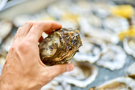 Closed oyster in a male hand, against the background of open oys Stock Photo
