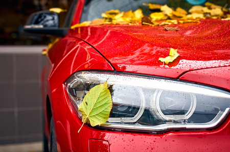 Close-up headlight and yellow leaves on the red car with raindrop, on blur background. season and transport concept Stock Photo