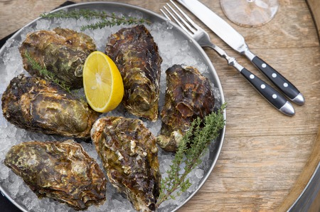 Oysters with lemon and ice on a metal tray, on a wooden surface. Top view