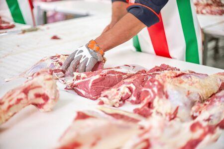 Industries du travail, boucherie à l'usine de viande. gros plan des mains de travailleur traitant le veau dans l'industrie alimentaire. Fabrication de produits carnés.