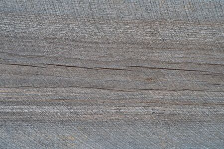 Light gray wood texture. Abstract wood texture background.