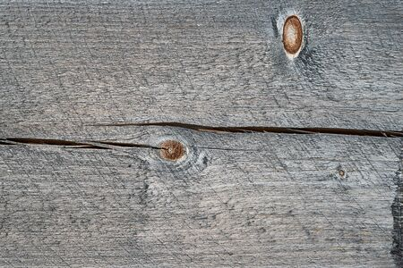 Light gray wood texture with knots. Abstract wood texture background.