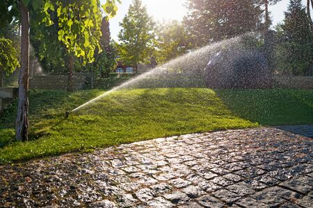 Sprinklers automatic watering grass on a hot summer day. Savings of water from sprinkler irrigation system with adjustable head. Automatic equipment for irrigation and maintenance of lawns, gardening. Stock Photo