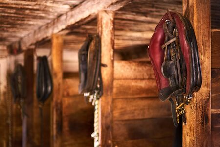 The horse harness hangs on the stall, old stable.