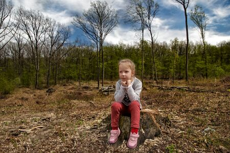Deforestation. Ecological problems of the planet, deforestation of pine forests. little girl inspects the site of deforestation.