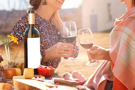 Smiling best friends girls drink wine on a outdoors. Portrait of two happy girls romantically sitting on lawn, talking and smiling. Emotions concept. Archivio Fotografico