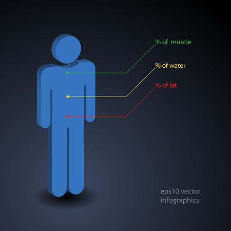 Simple infographic about percentage of muscle, water and fat in human body