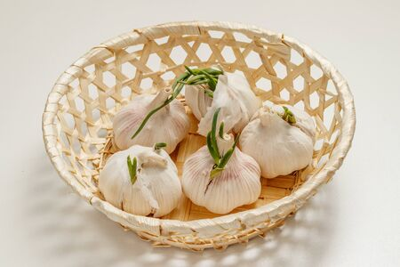 Five heads of garlic with sprouts lie in a basket on the table