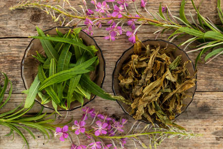 Dry and green leaves of Ivan tea. Fireweed flowers concept on rustic wooden board. Raw materials for making natural Russian tea. Willow herb leaves before and after fermentation