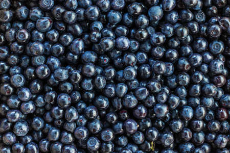 Food background of blueberries. Vegetarian healthy food. Healthy fresh nutrition. Forest bilberry. Fresh summer wild berries closeup.