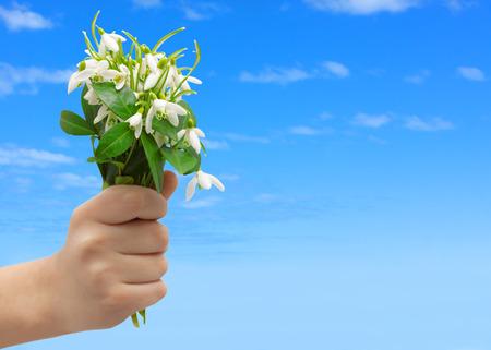 snowdrops hand greeting 3 월 8 일의 여자의 날 스톡 콘텐츠