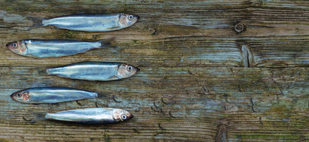 Baltic herring sprats wooden table aged background tint