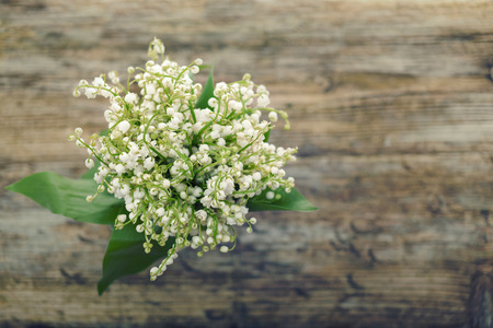 lily of the valley wooden table shallow DOF stylized Standard-Bild
